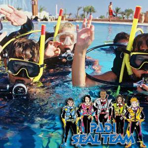 Cours de plongée sous-marine PADI Master Seal Team avec Deep Turtle